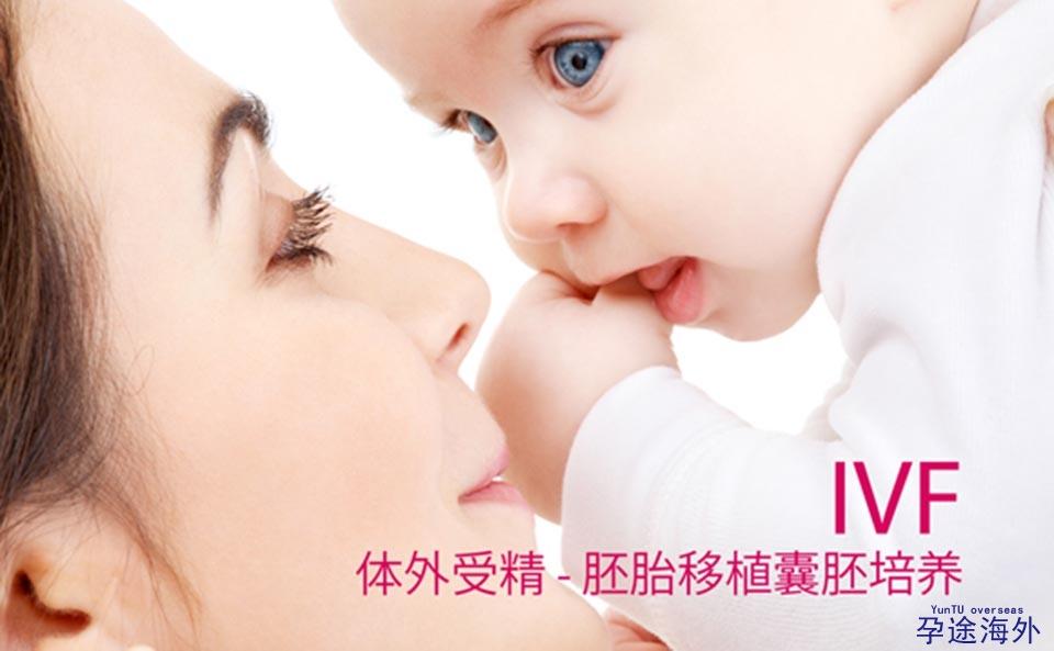 泰国试管婴儿翻译